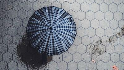 umbrella-on-street